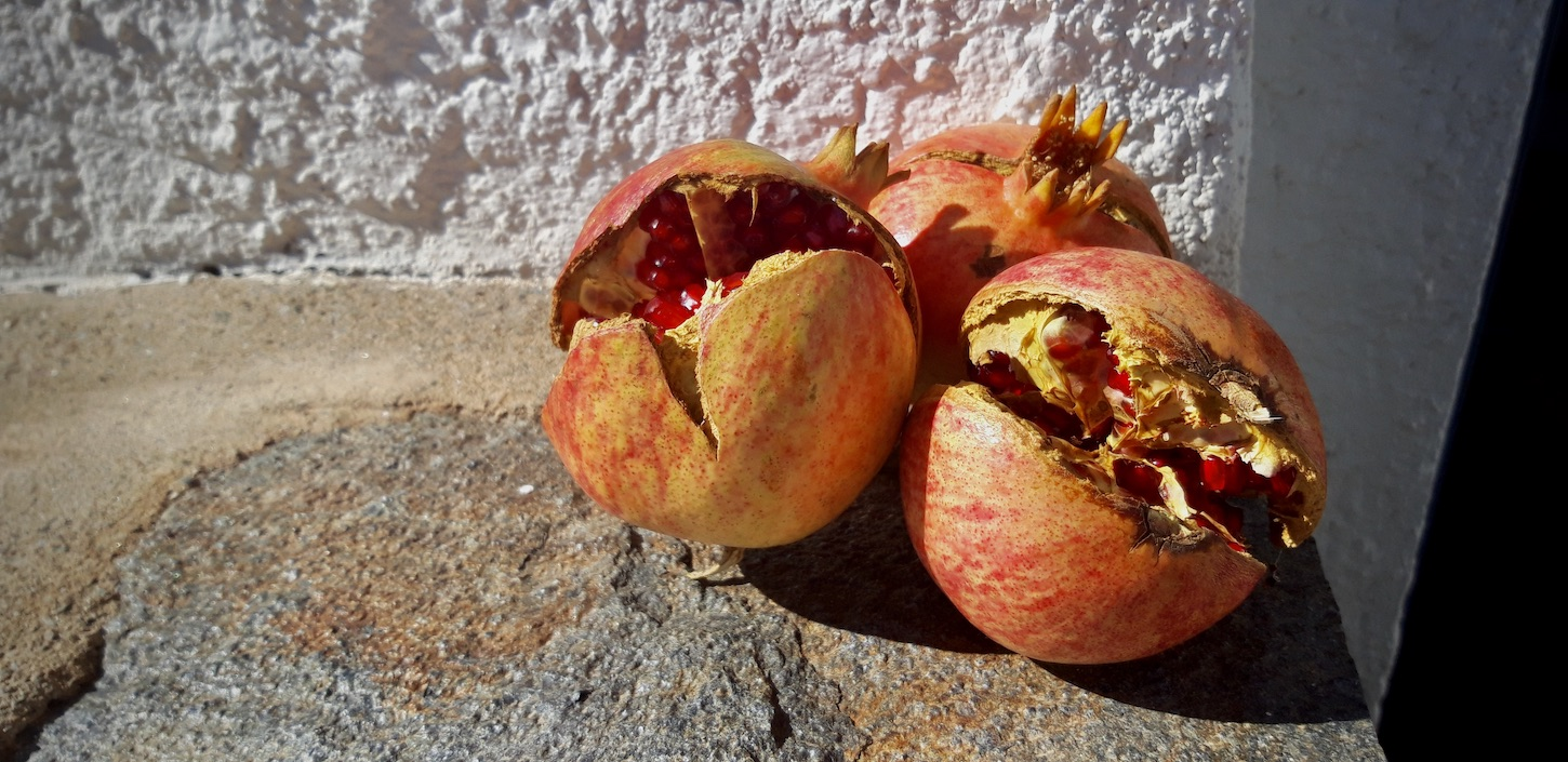 "Featured image for ""Granadas (Pomegranates) in Granada Province ES"""
