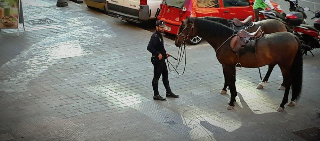 Horse police in Valencia