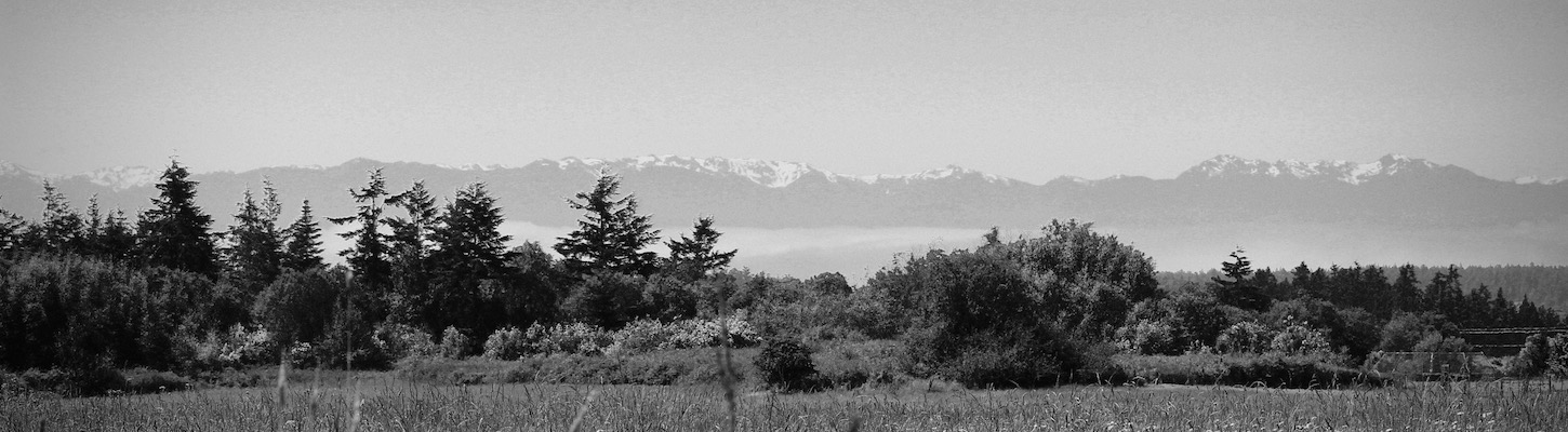Hurrican Ridge from Lopez Island