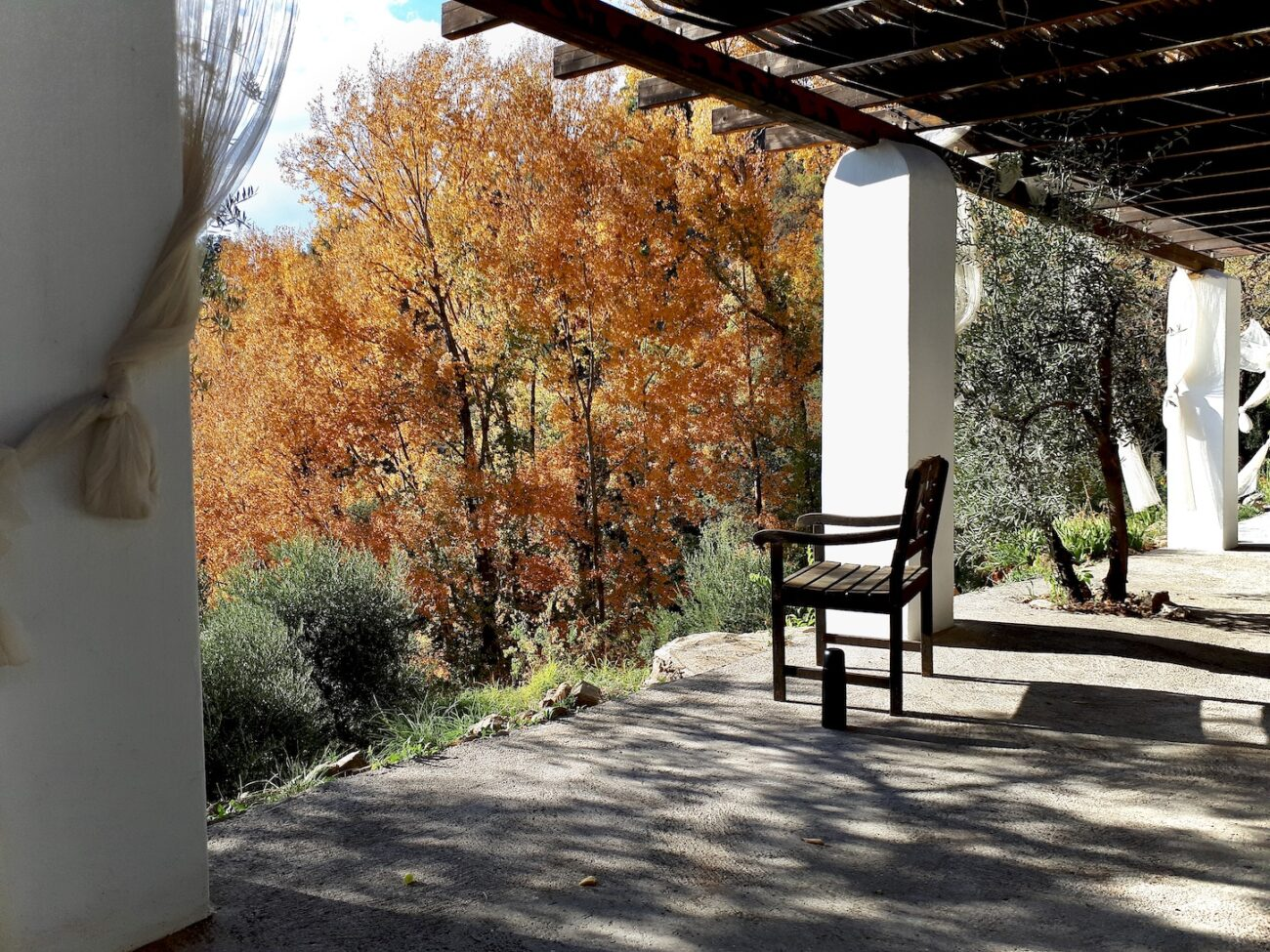 A veranda with fall colors