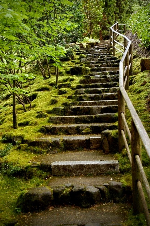 Moss covered steps in a Japaneses garden