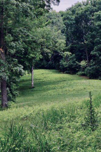 Bear Effigy Mounds in Iowa