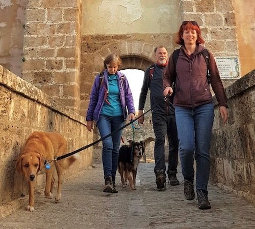 Hiking with Dogs near Buñol