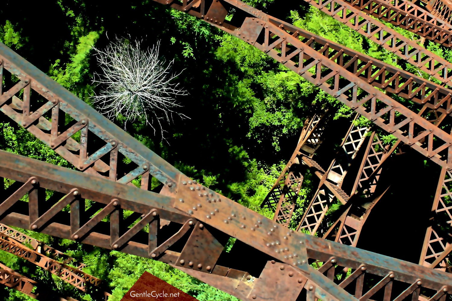 View-from-the-Trestle-1500x1000